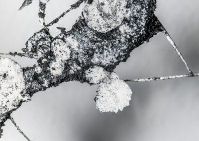 MAPRAA 2019 -Dripping de plâtre - © Tim-Douet